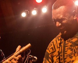 Bassekou Summer Tour 2014